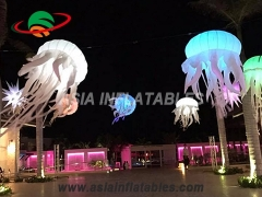aquarium suspendu de méduses led décoration