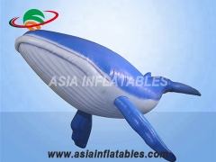 gonflable baleine bleue