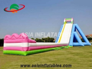 Beach Slide Inflatable Hippo Water Slide